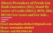 Providers of Fresh Cut BG,  SBLC and MTN